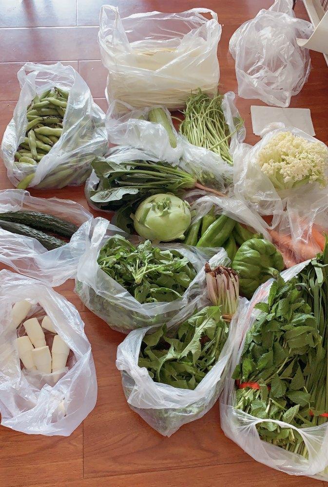 本日買った野菜。