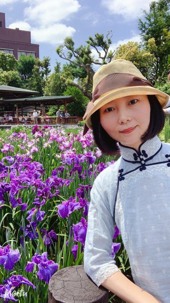 大阪市城北公園の花菖蒲園。